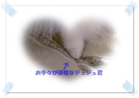 b0167519_22375947.jpg