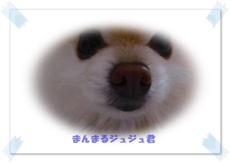 b0167519_22382101.jpg