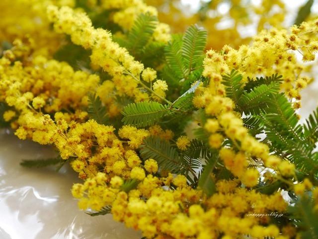 3月8日は『ミモザの日』。愛と幸せを呼ぶ花「ミモザ」の粋な楽しみ方_d0350330_16093627.jpg