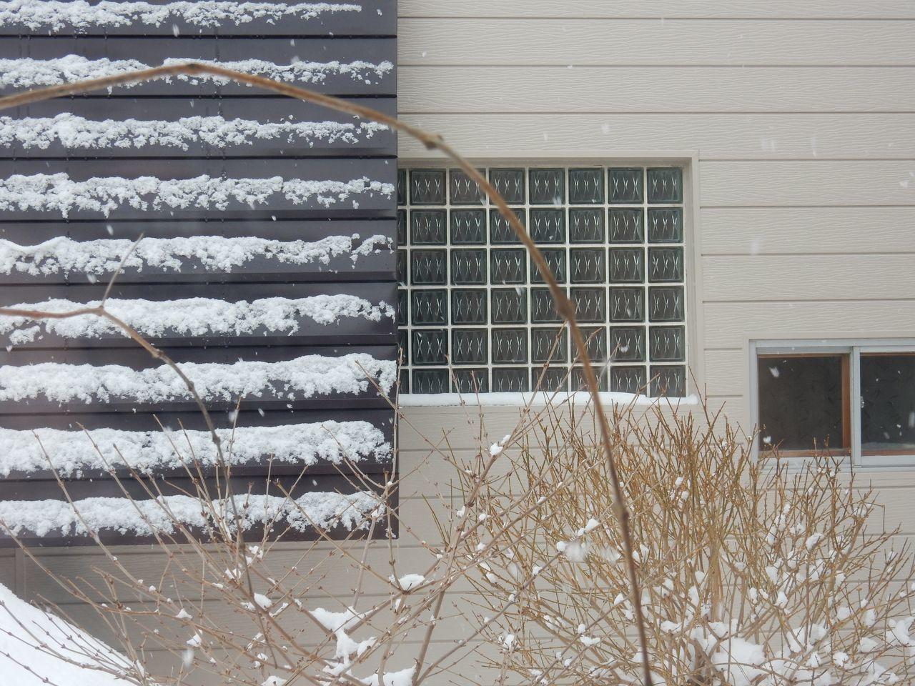 寒さが底を脱したかもしれない日、積雪深が昨年を追い越す_c0025115_20304604.jpg