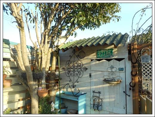 シェッドの屋根替え~^_^;_b0096584_17495042.jpg