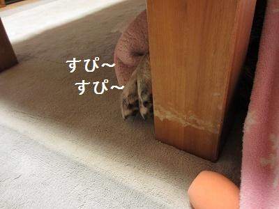 f0068501_2311138.jpg