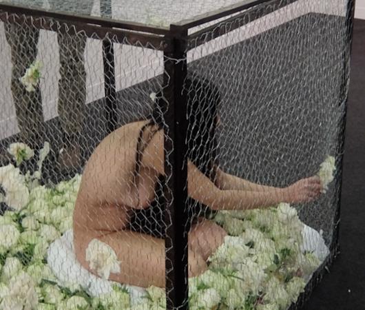 アーモリー・ショー2016:Romina de Novellisさんの全裸ライブ・アート・パフォーマンス、La Gabbia_b0007805_20463039.jpg
