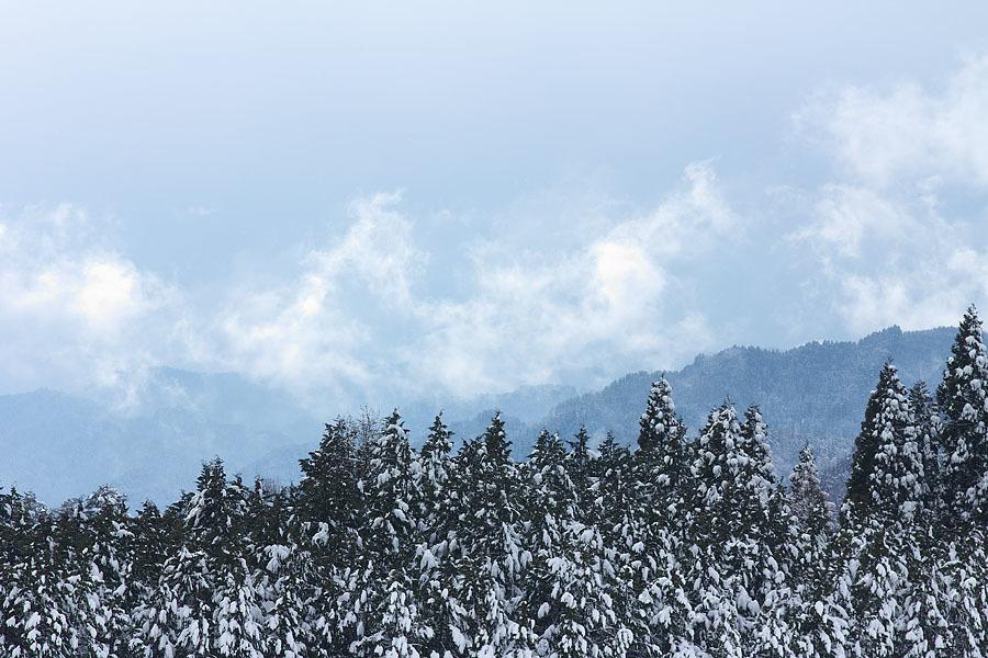 雪景色 総集編①_c0067040_09415257.jpg