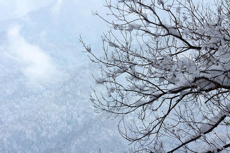 雪景色 総集編①_c0067040_09423467.jpg