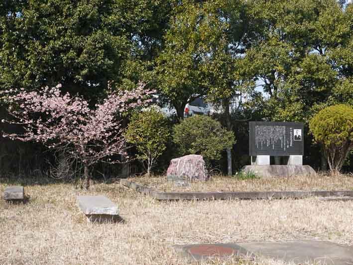 野口初太郎翁頌徳碑の建立地の河津桜が満開3・3_c0014967_15171592.jpg