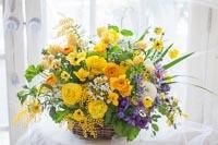 春爛漫_c0114811_07155460.jpg
