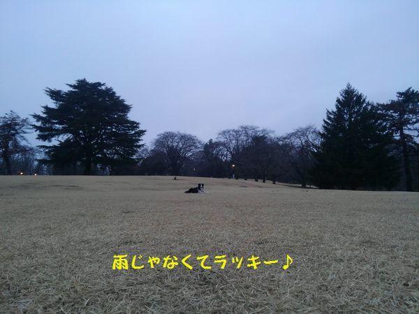 d0224111_19092799.jpg