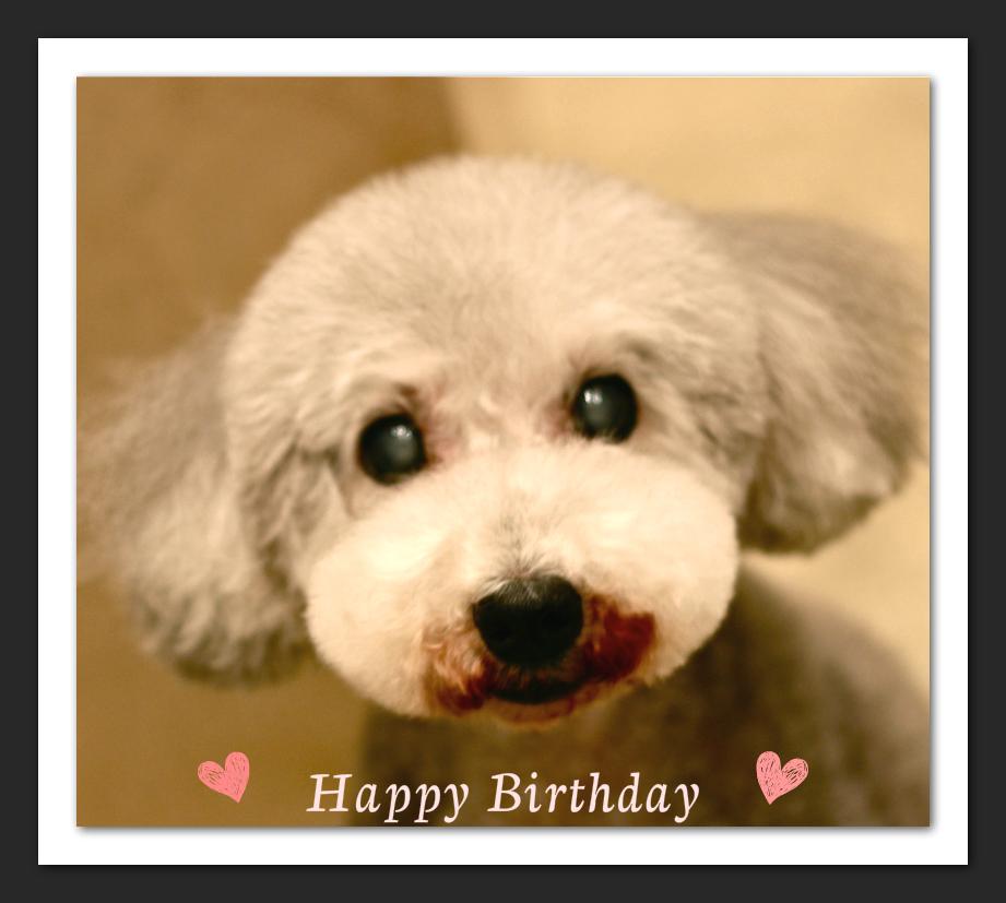 Happy Birthday♡パティちゃん_d0060413_14104021.jpg