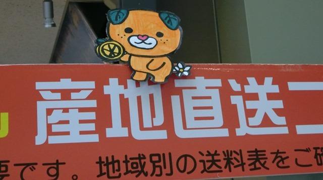 藤田八束の地方創生@西宮市のマスコット「みやたん」と愛媛のマスコット「みきゃん」_d0181492_09480353.jpg
