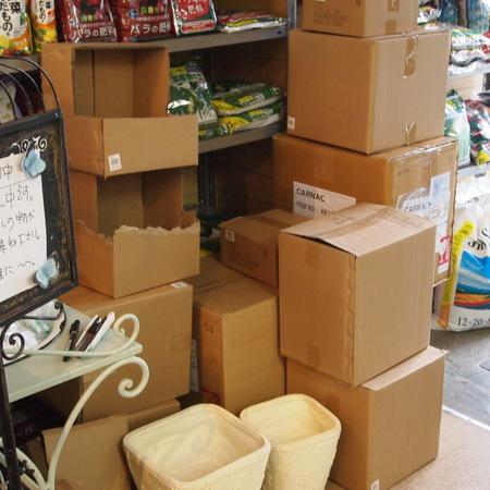 現在、店内はリニューアル準備中です_a0292194_15235617.jpg
