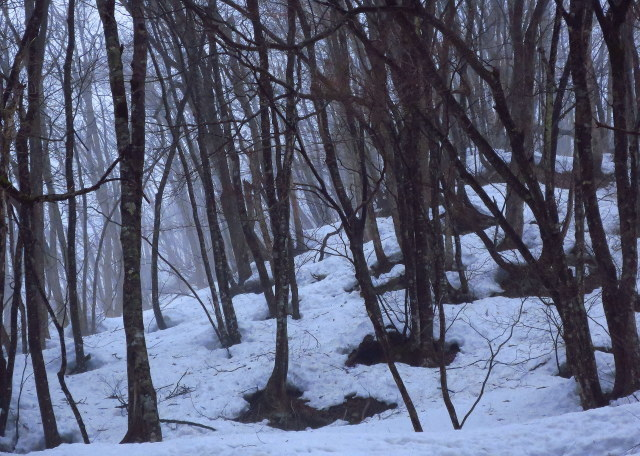 融雪霧_a0214206_21105770.jpg