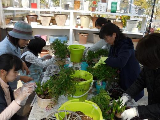 窓辺で楽しむ春球根の香りの寄せ植え_f0139333_23501448.jpg