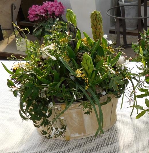 窓辺で楽しむ春球根の香りの寄せ植え_f0139333_23511145.jpg