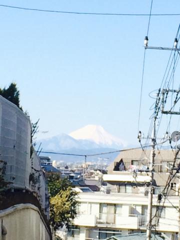 富士山&梅林_a0153945_13274138.jpg