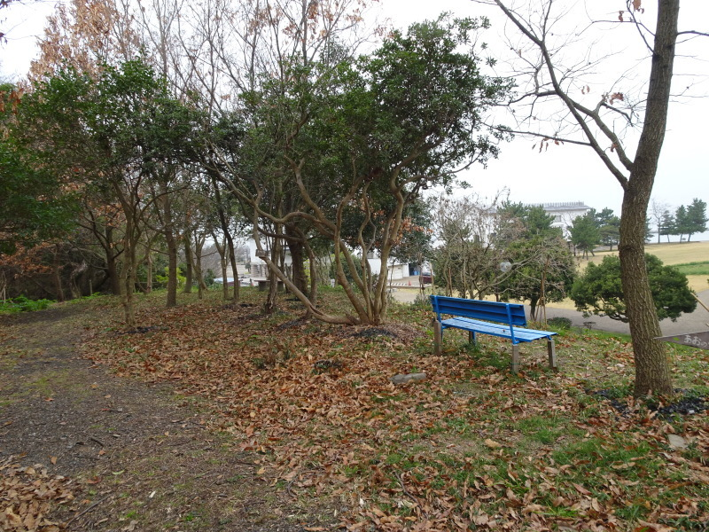 平成28年3月度運営委員会・・・うみべの森を育てる会_c0108460_21011326.jpg