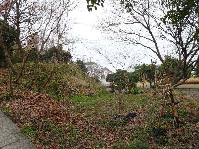 平成28年3月度運営委員会・・・うみべの森を育てる会_c0108460_21011868.jpg