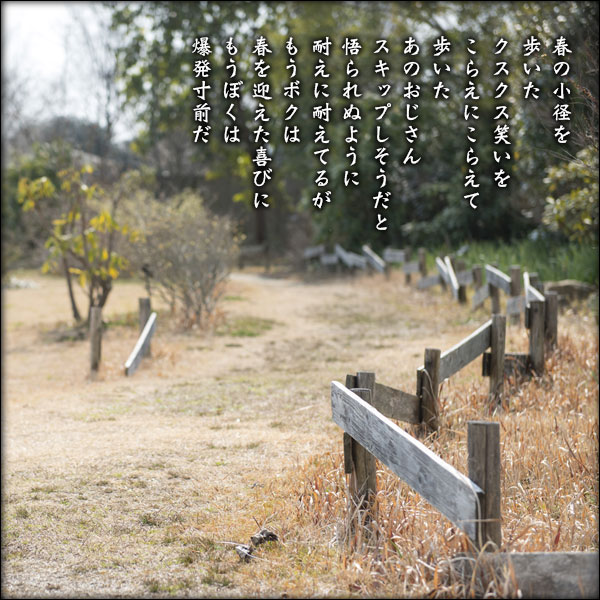 a0197968_1935521.jpg
