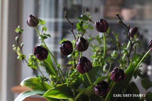 VERDUREのお花、リメイク_d0353281_23070139.jpg