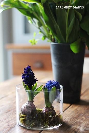 VERDUREのお花、リメイク_d0353281_23182892.jpg