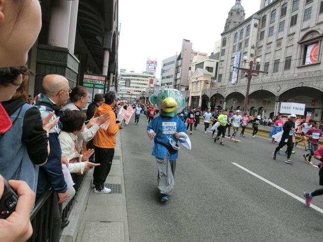 鹿児島マラソン 2016(平成28年)_e0294183_11092334.jpg
