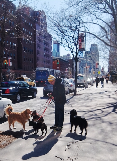 NYミッドタウン・ウェスト、52~42丁目間の11番街沿いの風景_b0007805_351394.jpg