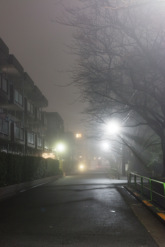 Tokyo foggy night_a0003650_2245361.jpg