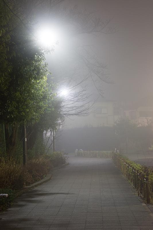 Tokyo foggy night_a0003650_22471922.jpg