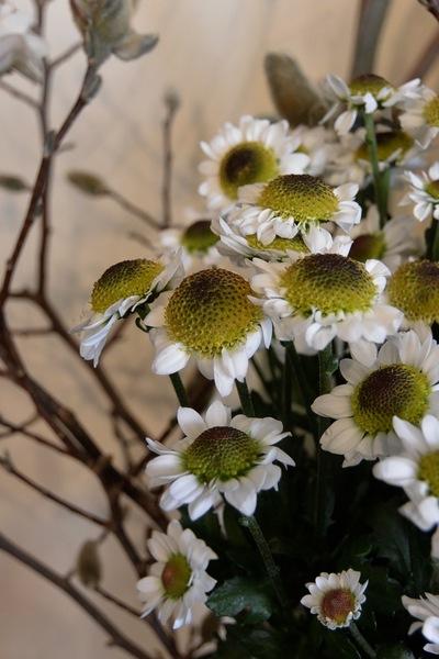 ご注文のお花たち。。。_a0229658_2221431.jpg