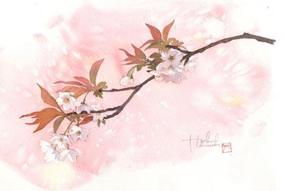 4/1 陽子名古屋講座 桜を描く_f0176370_1532491.jpg