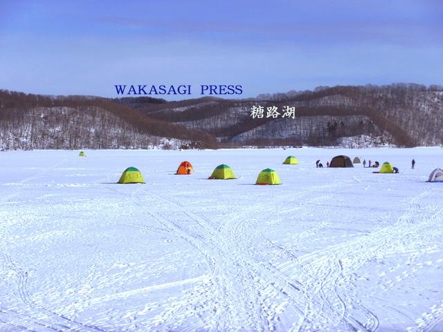 魚介シリーズ  釧路湿原のワカサギ_b0011584_65478.jpg