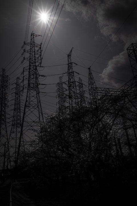 電気ショック疑惑のフライング桜_d0353489_20223766.jpg