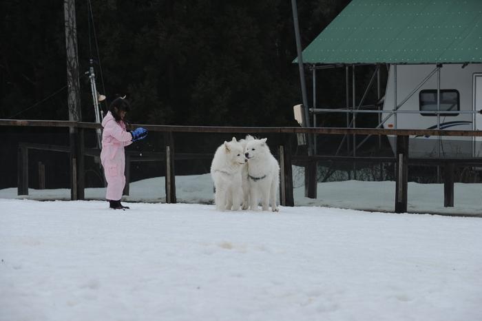 第9回 雪中オフ 1_a0049296_18143772.jpg