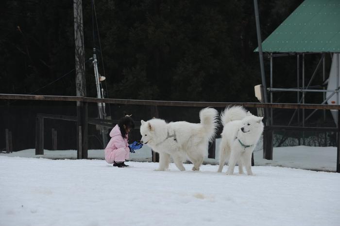 第9回 雪中オフ 1_a0049296_1814519.jpg