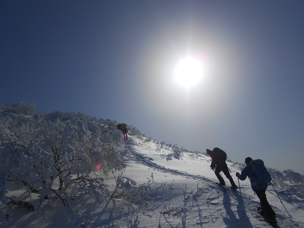 徳舜瞥山、ホロホロ山、オロオロ山、3月5日-同行者からの写真-_f0138096_14111561.jpg