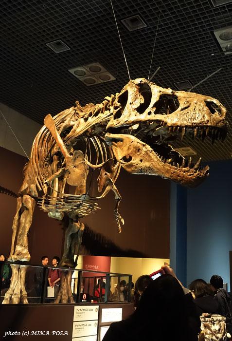 恐竜博2016 スタート!_b0164803_19125574.jpg