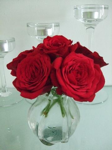 フランスのお花 ♥ Vol.2_e0303431_17282869.jpg