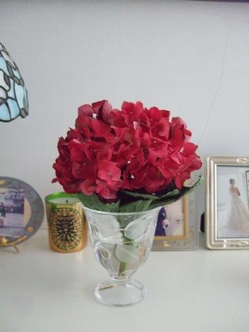 フランスのお花 ♥ Vol.2_e0303431_1729549.jpg