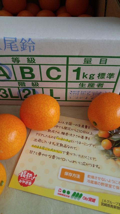 b0019674_1393928.jpg
