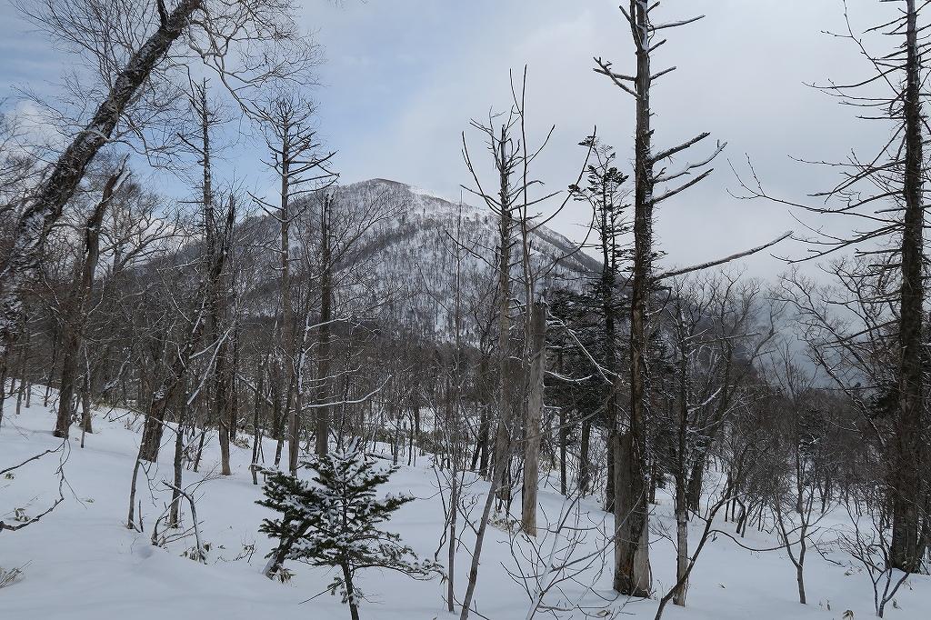 734.7mピークと幌平山、3月9日-速報版-_f0138096_17151865.jpg