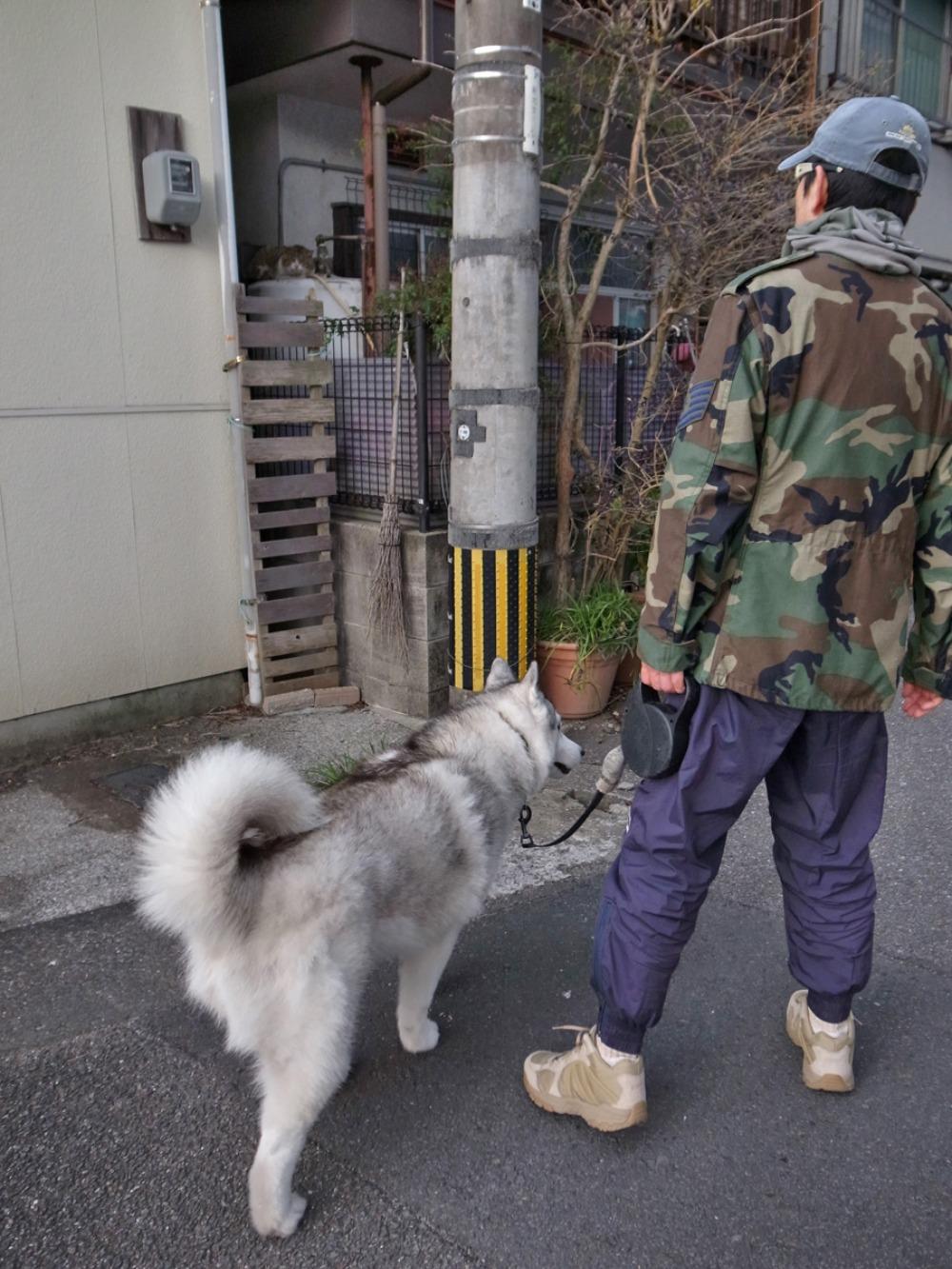 歩く歩く食べる (^o^)_c0049299_22505071.jpg