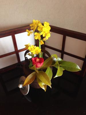 春の訪れ゚・*:.。.❀❀❀_f0015517_01450453.jpg