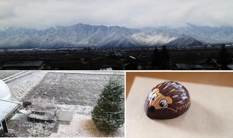 雪降りの日_a0212730_2034971.jpg