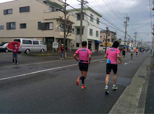 静岡マラソン2016 (後編)_a0260034_12575672.jpg