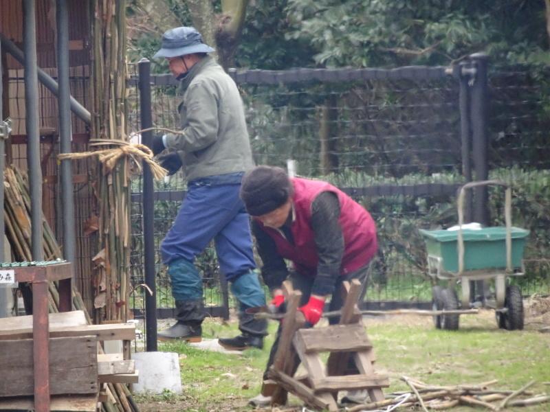 薪&杭作り&手すり作り準備・・・うみべの森_c0108460_22284174.jpg