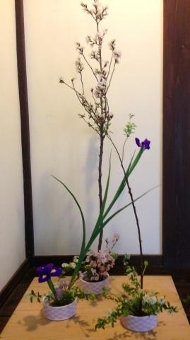 今週のお花_a0080074_12531848.jpg
