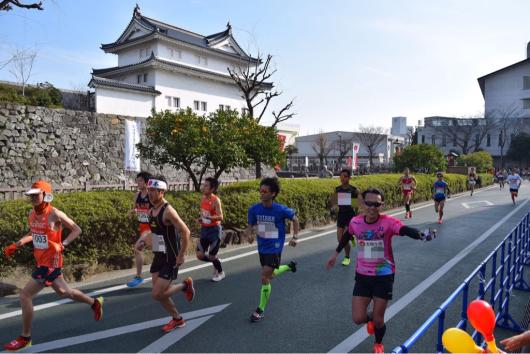 静岡マラソン2016 (後編)_a0260034_09450943.jpg