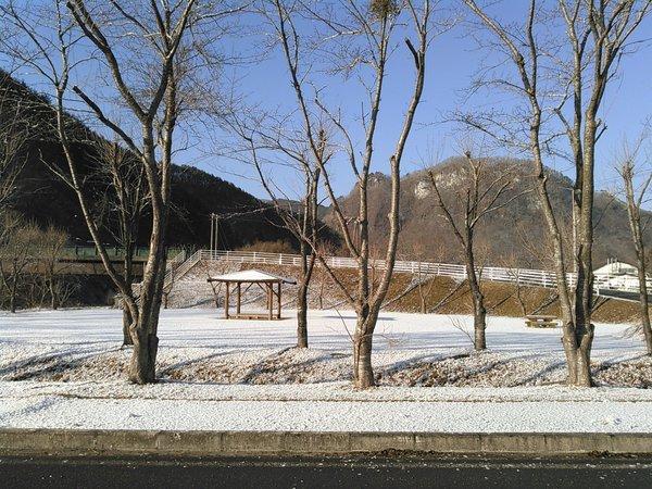 東日本大震災から5年。_b0206037_18225858.jpg