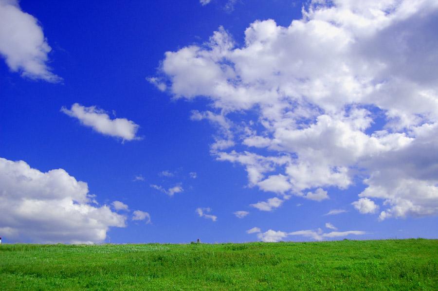あの丘で_a0093054_15361693.jpg