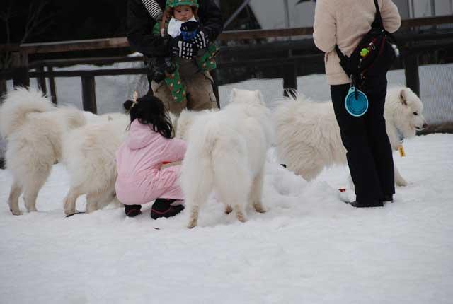 今年も雪中オフ行ってきました_b0120492_17203061.jpg